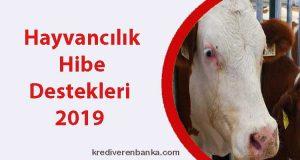 hayvancılık hibe destekleri 2019